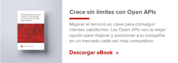 open apis ebook
