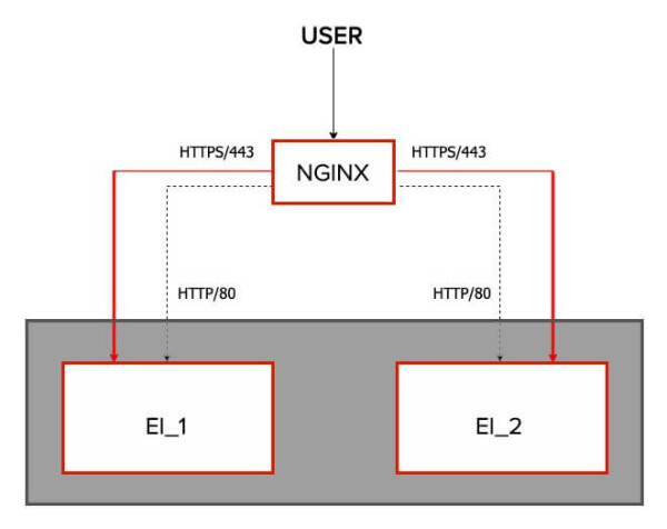 high-level picture of the NGINX and EI setup